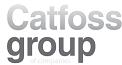 catfoss-group-logo 5